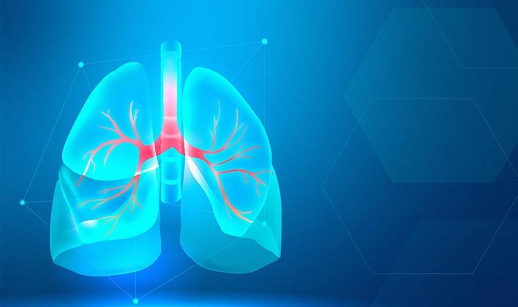 Zavod Gaj: Multislajsni skener - CT pluća!